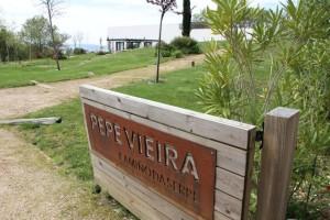 Pepe Vieira (Camiño da Serpe). Blog Esteban Capdevila
