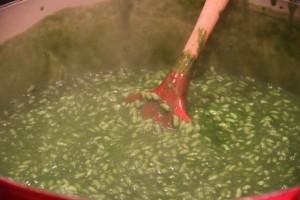 arroz con plancton. Blog Esteban Capdevila