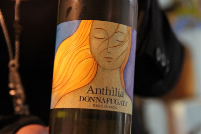 VINO-ANTHILIA-BLOG-ESTEBAN-CAPDEVILA
