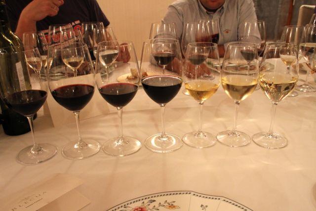 vinos-viñas-del-vero-en-cata