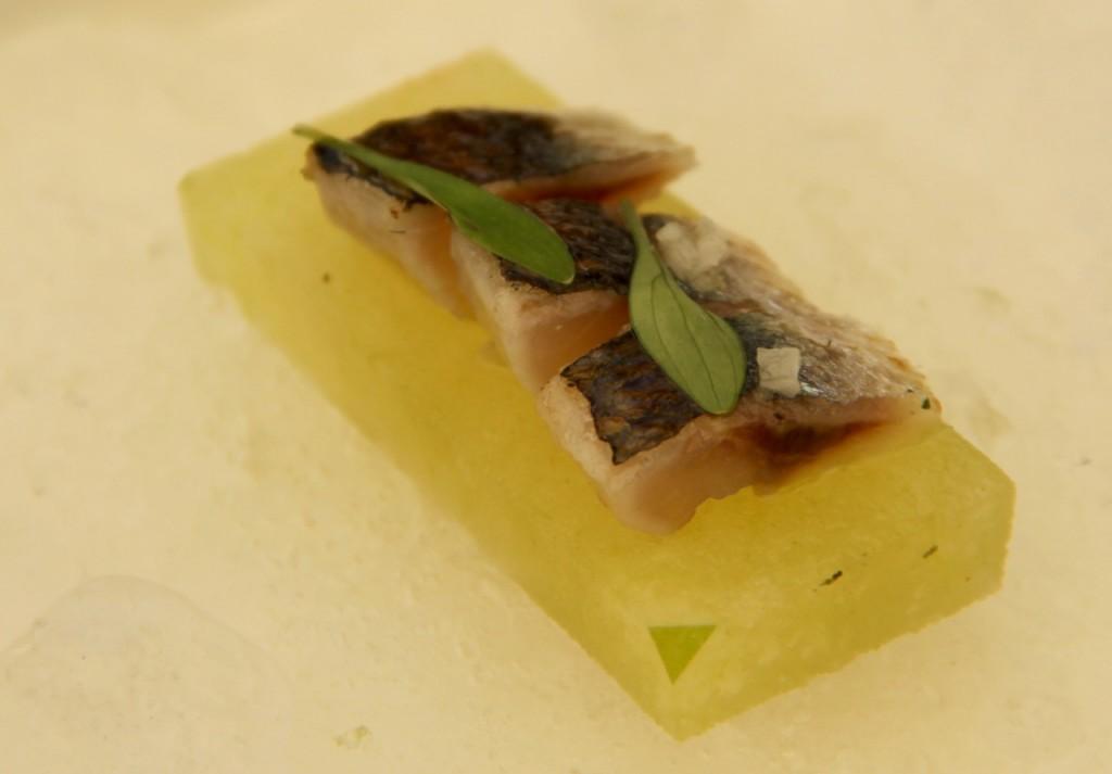 sardina-manzana-pepino y lima - 1