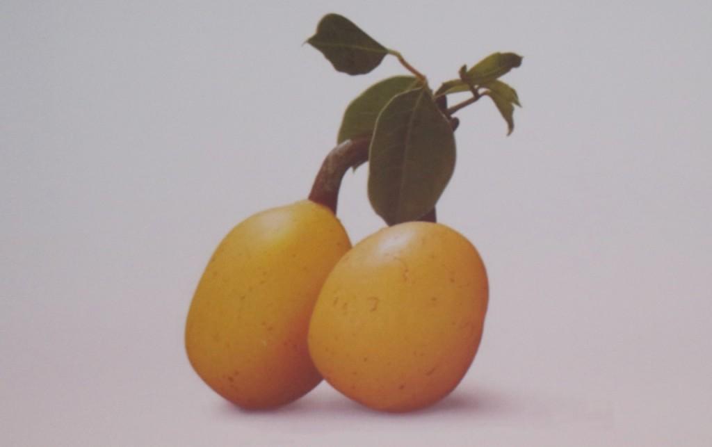 margot-plato-2-1